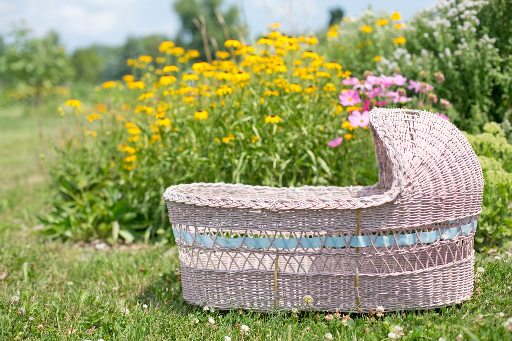 baby bassinet in field